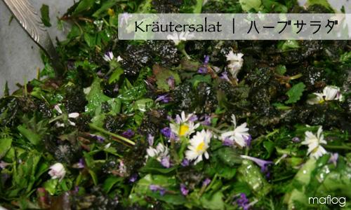 Kräutersalat |  ハーブサラダ